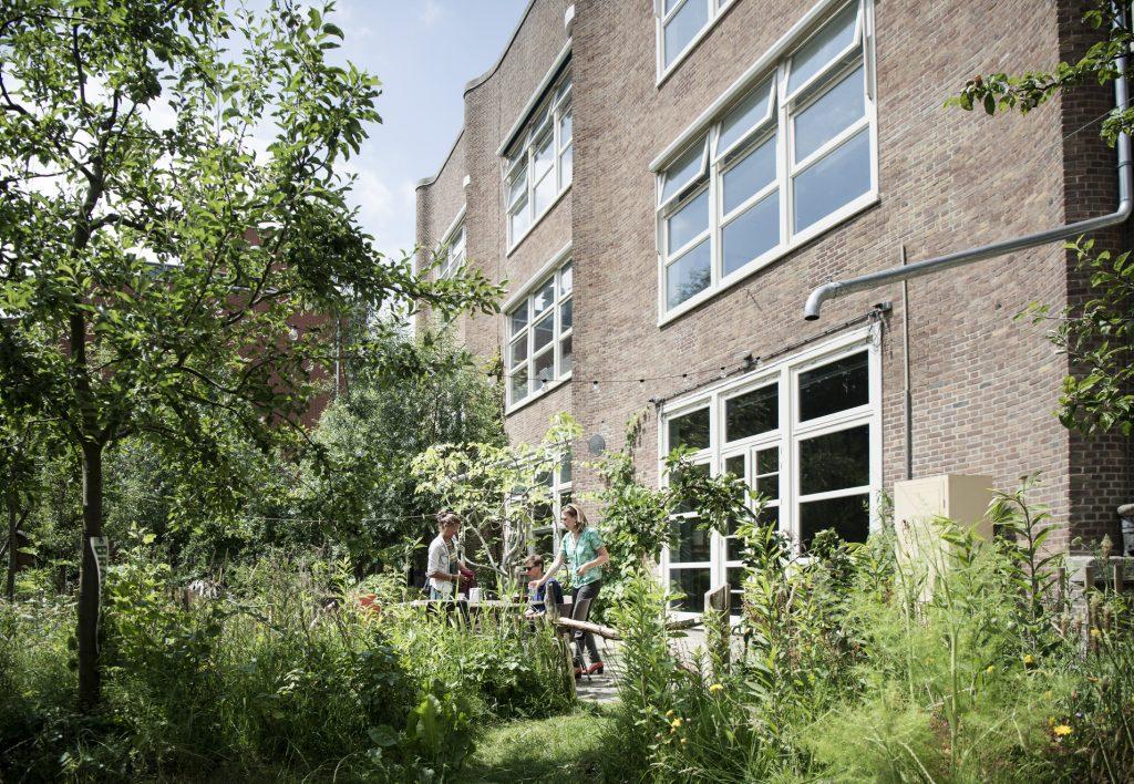 De Tuinen Van West Amsterdam.Open Tuinen West Midwest